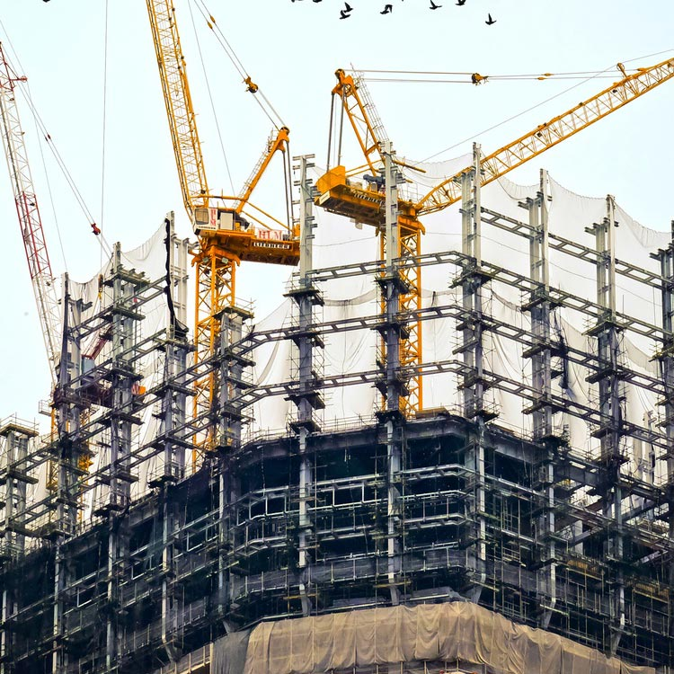 Real Estate Development, and Project and Construction Management
